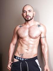 Alex Torres Bio & Info